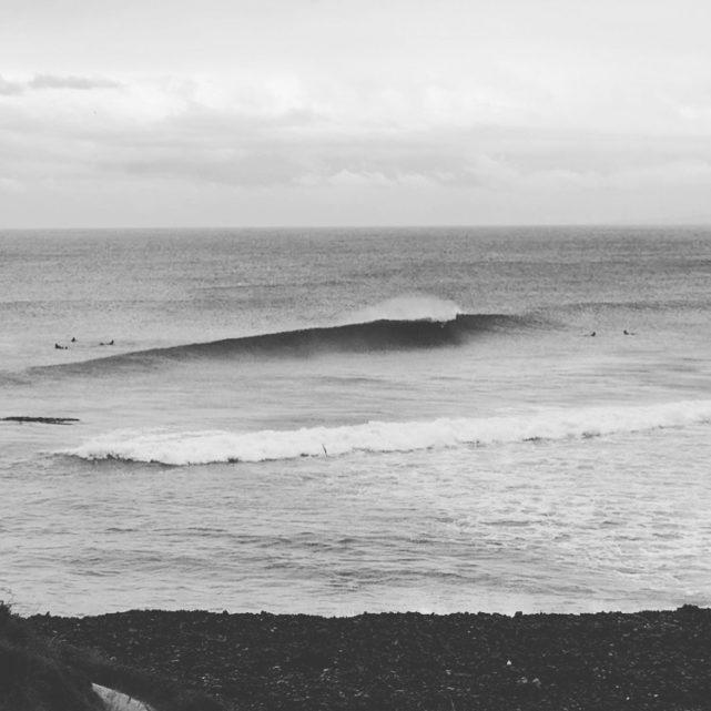 Swiwi Design surfing