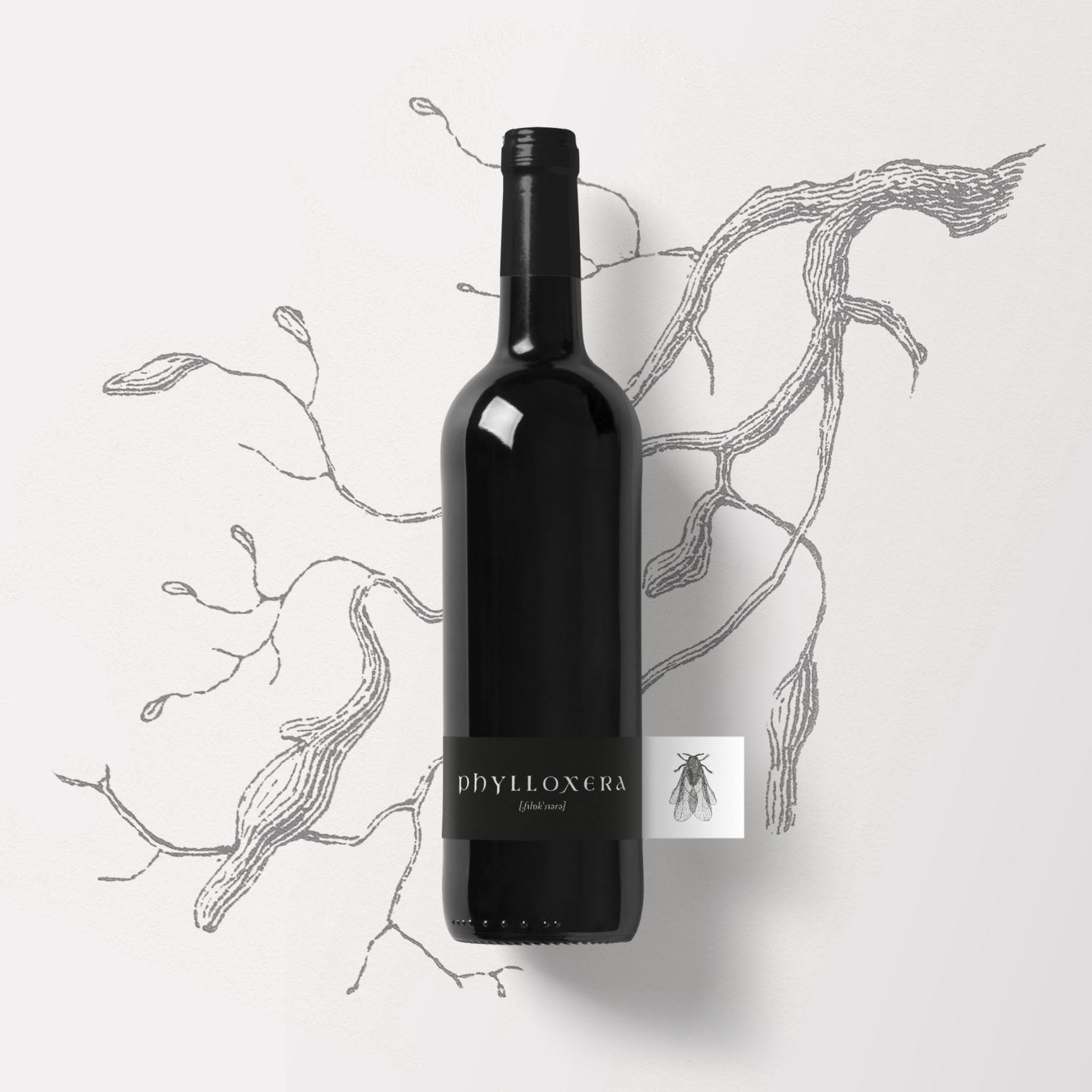 , Phylloxera, Swiwi Design – Kreativ Studio – Aargau/Basel, Swiwi Design – Kreativ Studio – Aargau/Basel